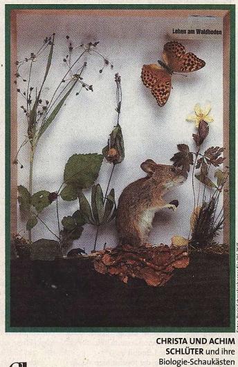 botanische schaukast